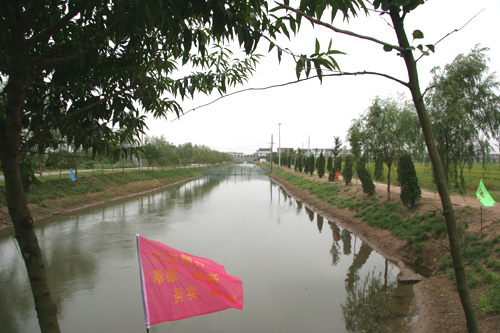 石庄中学前河驳坡千赢国际网页手机登录